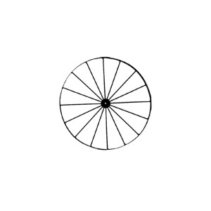 24-inch Wheel with 16 Spokes